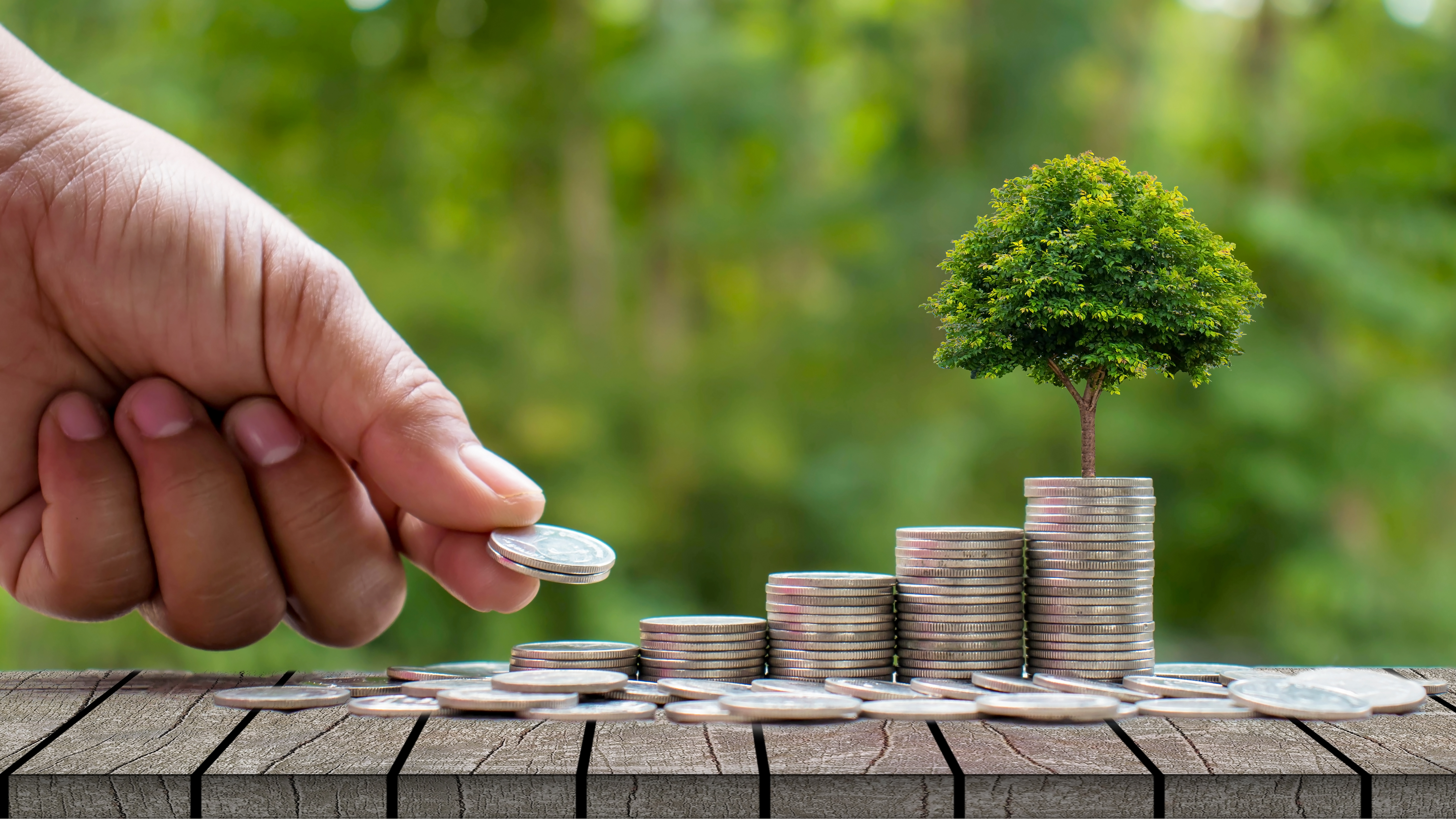 Planting trees on piles of coins and wooden floors. Ideas for saving money and investing.